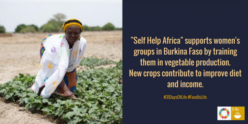 Self Help Africa as Climate-Smart Agriculture Initiative