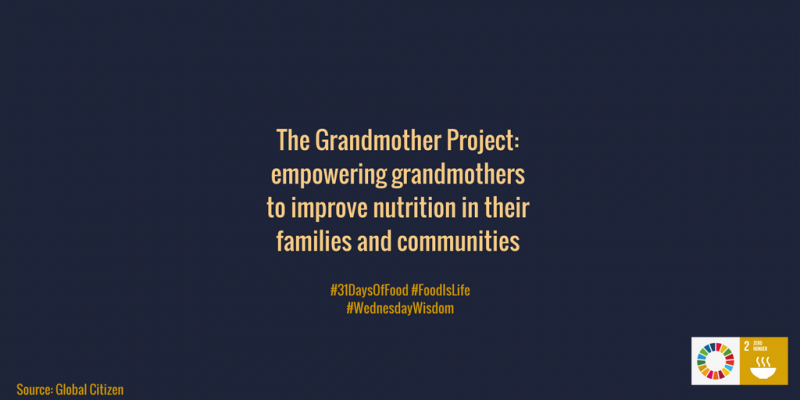 The Grandmother Project