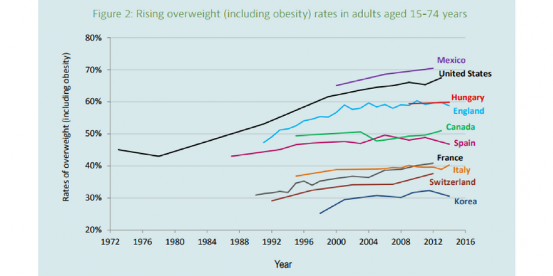 Obesity/Overweight chart