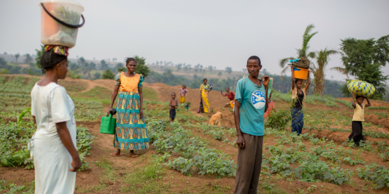 Female farmers in DRC