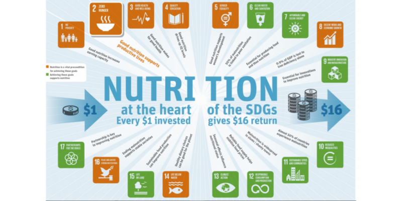 Infographic on nutrition and other SDGs
